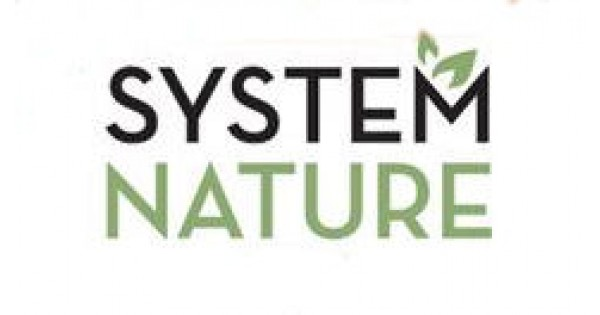 System Nature